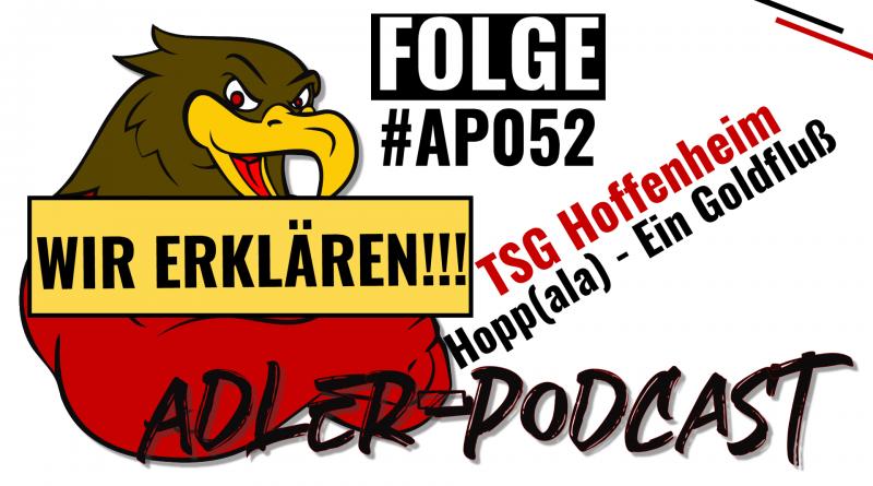 #API002: TSG Hoffenheim